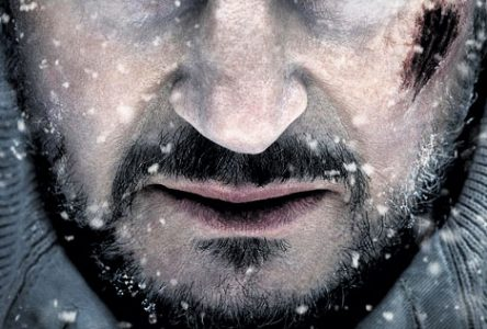 La peur grise: survivre à une meute de loups, tout un défi!