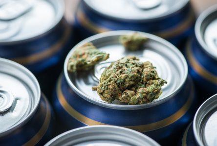 Cannabis et alcool: des effets variables selon l'ordre de consommation