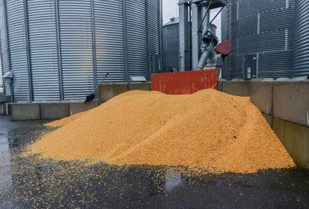 Une symbiose industrielle dédiée à l'agroalimentaire