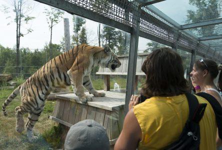 Des visiteurs du Parc Safari exposés à la rougeole
