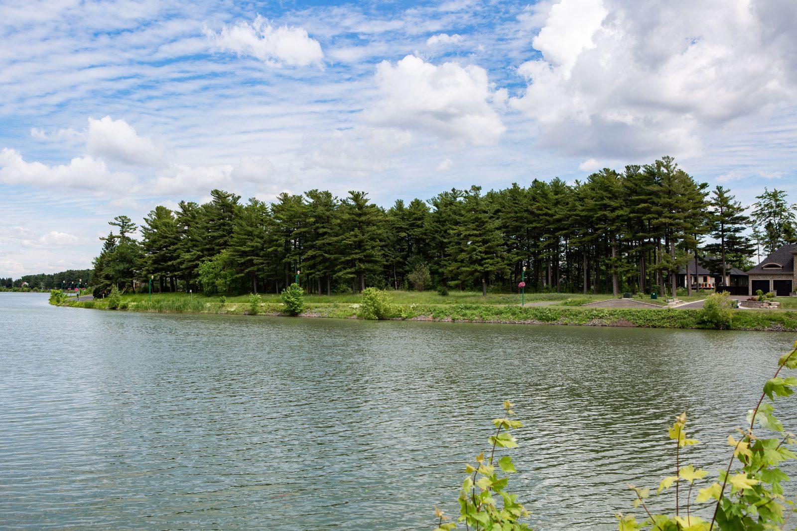 Avis de réserve pour conserver une partie de la pinède de l'île Sainte-Thérèse