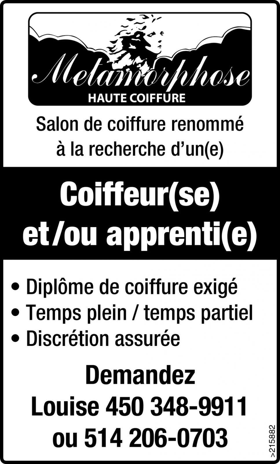 Coiffeur(se) et /ou apprenti(e)
