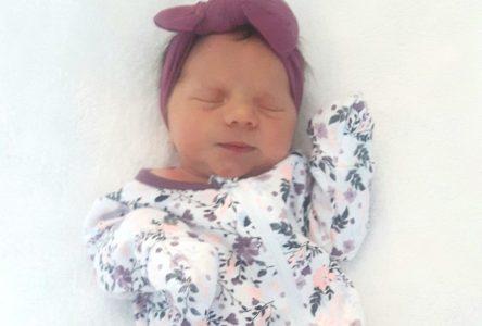 Livia McArdle, premier bébé de l'année