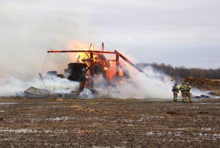 Un bâtiment agricole ravagé par les flammes à Sabrevois