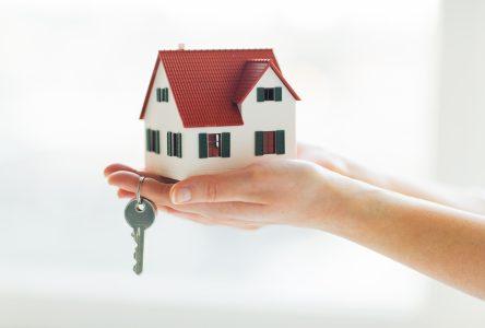 Le marché immobilier a repris là où il s'était arrêté