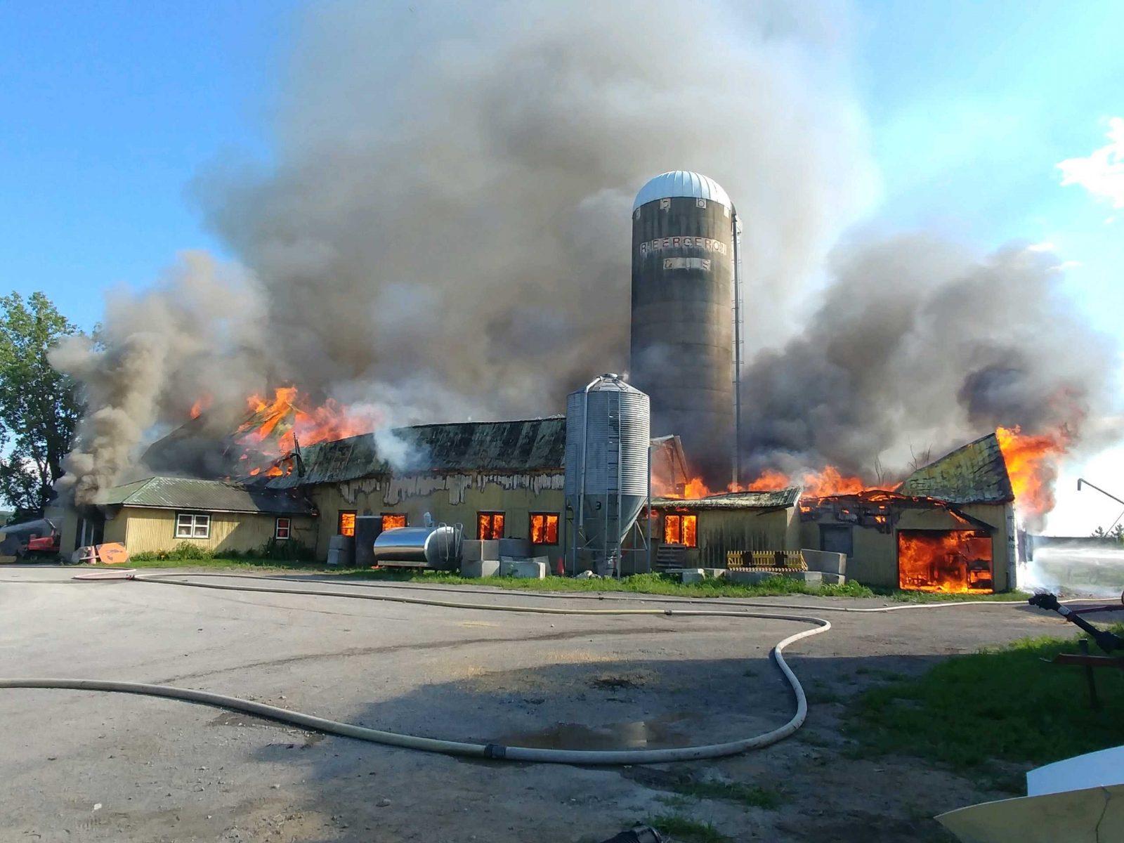 Une cinquantaine de vaches périssent dans un incendie
