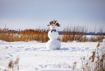 Concours de bonhommes de neige à Saint-Jean-sur-Richelieu