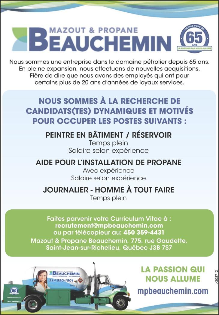 PEINTRE EN BÂTIMENT / RÉSERVOIR / AIDE POUR L'INSTALLATION DE PROPANE / JOURNALIER – HOMME À TOUT FAIRE