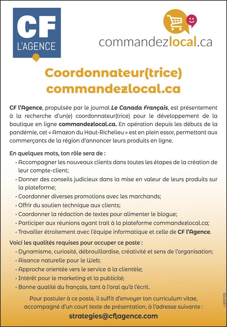 Coordonnateur(trice)